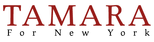 Logo trans v6 blue font
