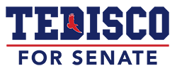 Tedisco logo web