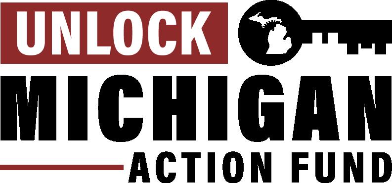 Unlockmichigan brandguide 04